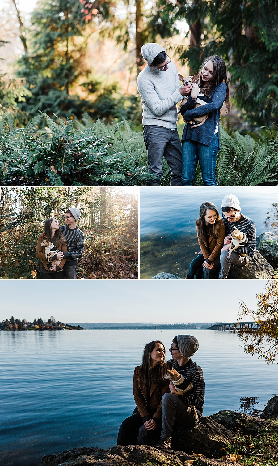Washington Arboretum Fall Engagement Photos in Seattle by Seattle Wedding Photographer Amy Galbraith