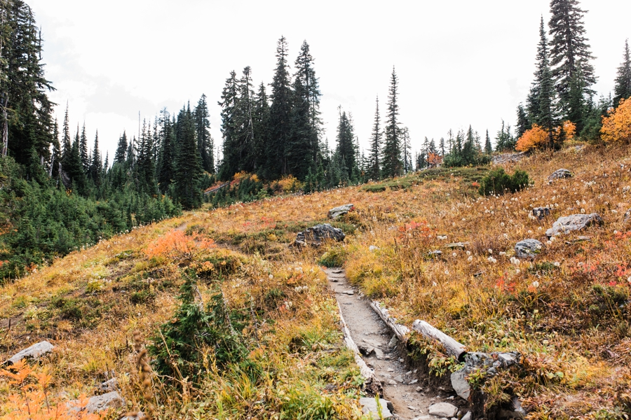 A trail near Mt Rainier National Park filled with fall color by mountain photographer Amy Galbraith.