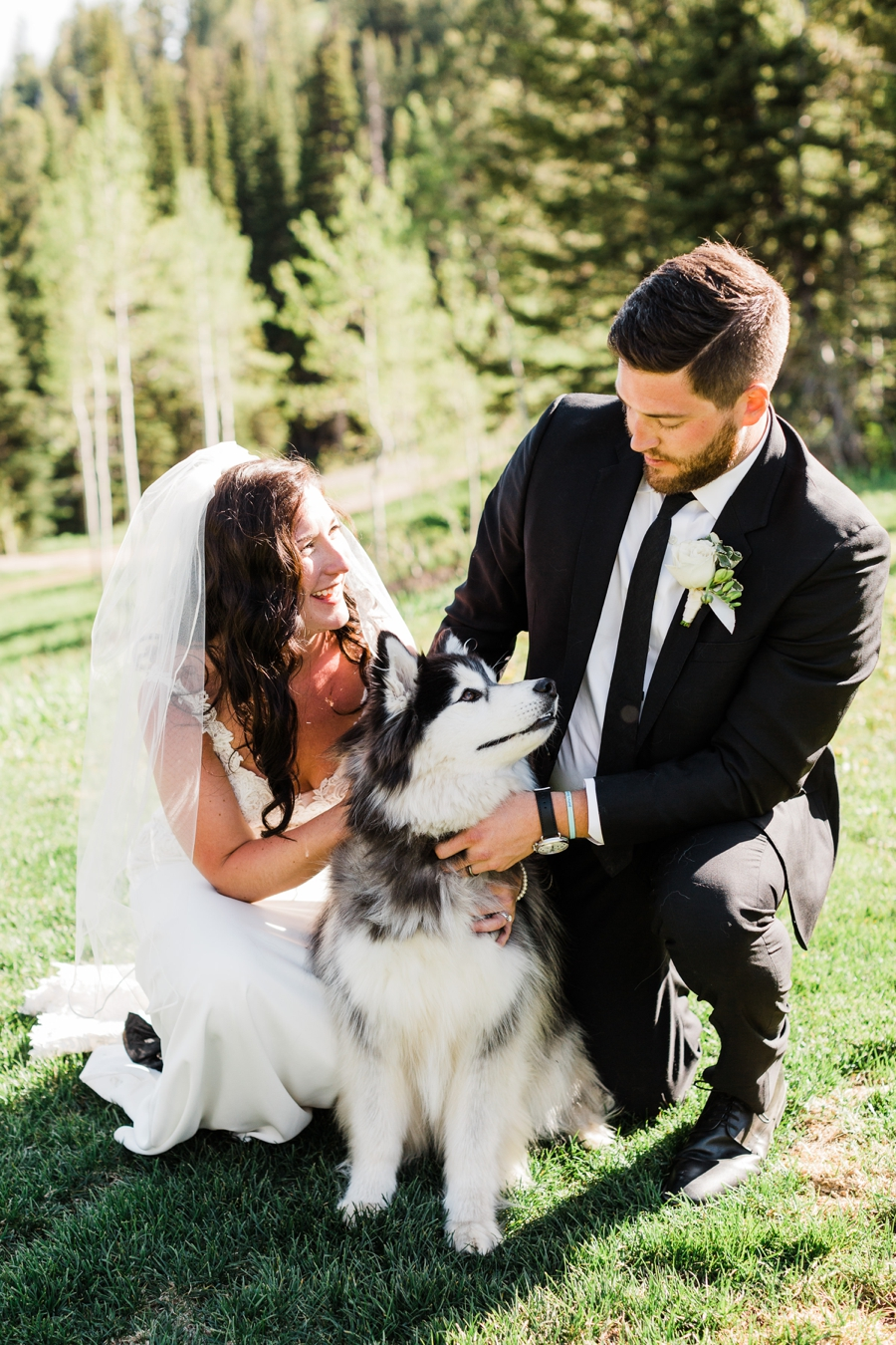 A bride and groom snuggle with their husky on their Jackson Hole wedding day at Grand Targhee